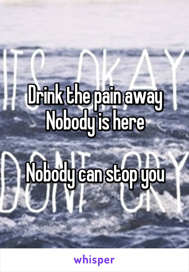 Drink the pain away Nobody is here  Nobody can stop you