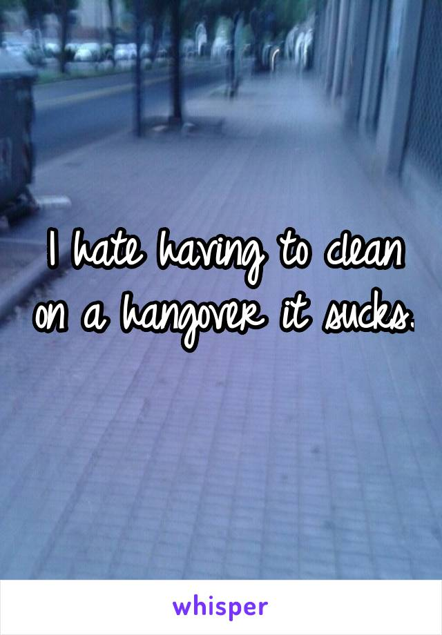 I hate having to clean on a hangover it sucks.