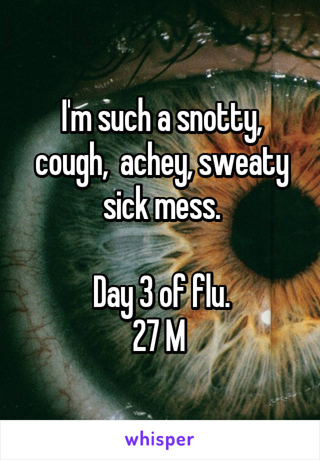 I'm such a snotty, cough,  achey, sweaty sick mess.  Day 3 of flu. 27 M