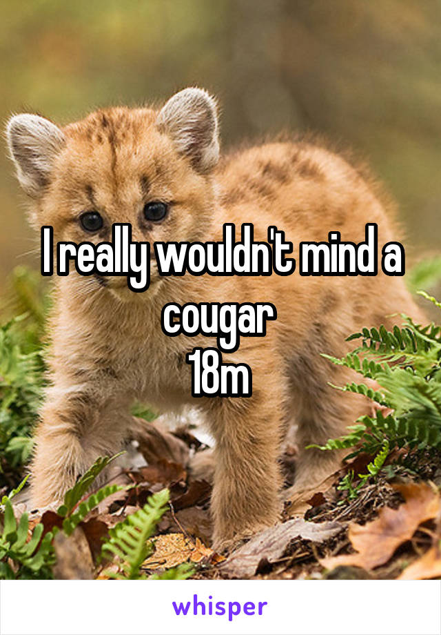 I really wouldn't mind a cougar  18m