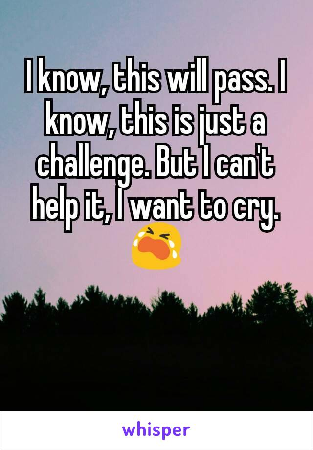I know, this will pass. I know, this is just a challenge. But I can't help it, I want to cry. 😭