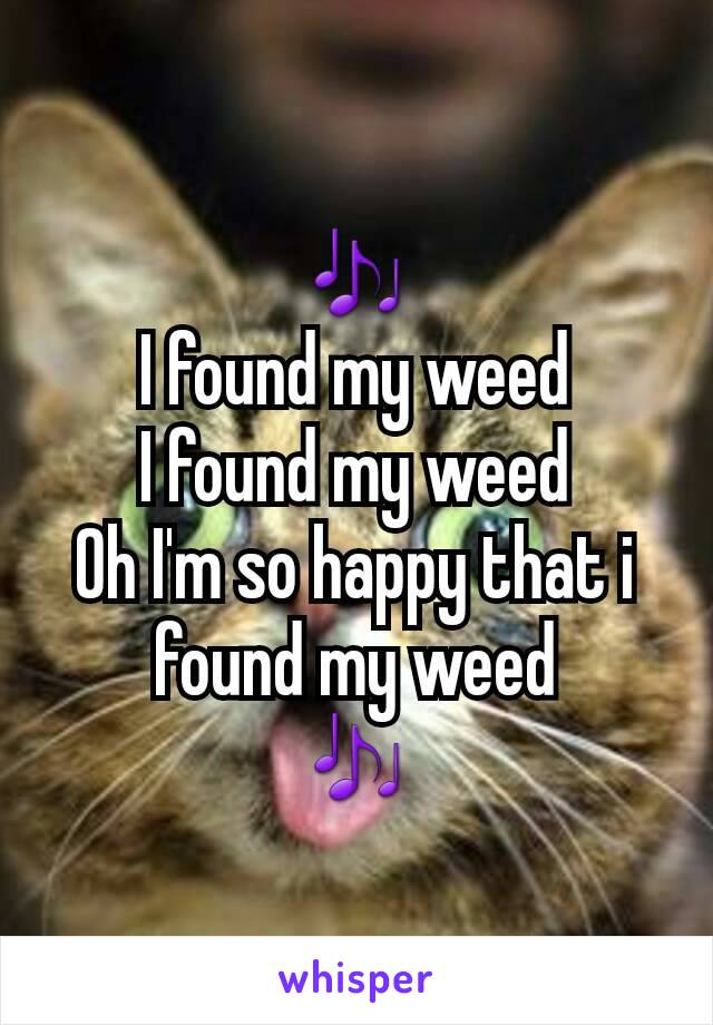 🎶 I found my weed I found my weed Oh I'm so happy that i found my weed 🎶