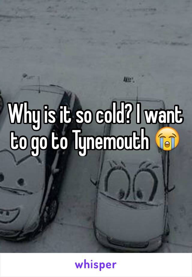 Why is it so cold? I want to go to Tynemouth 😭