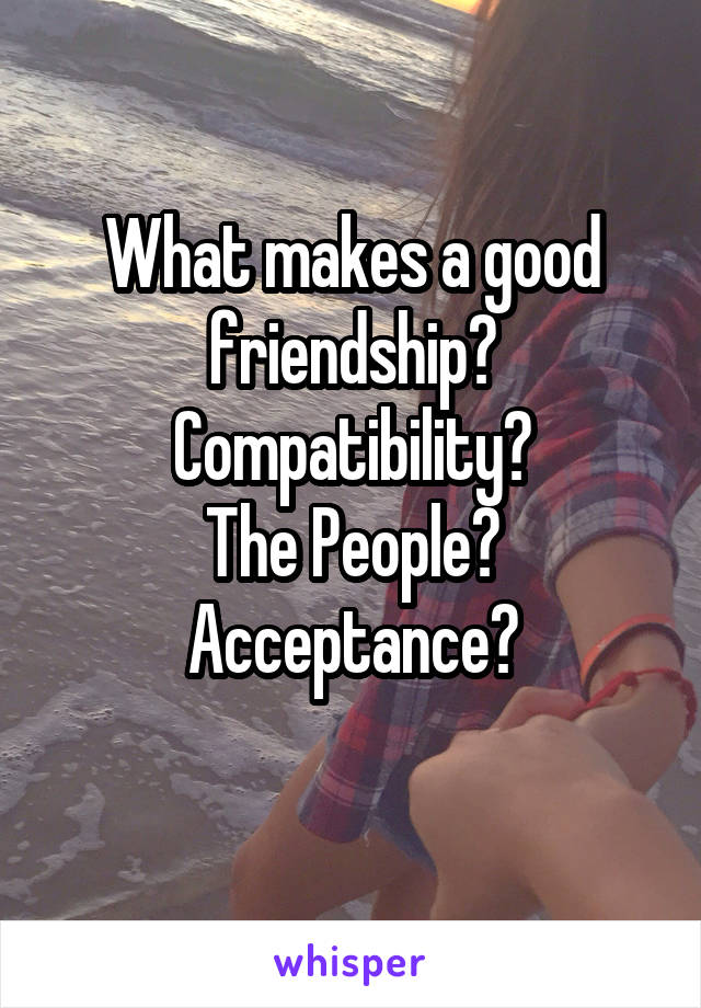 What makes a good friendship? Compatibility? The People? Acceptance?