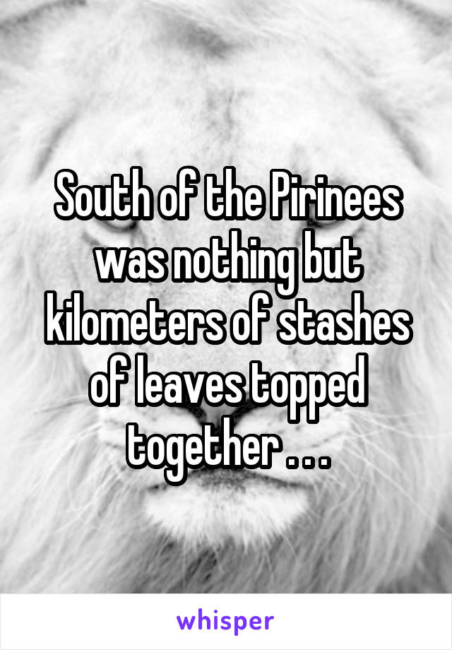 South of the Pirinees was nothing but kilometers of stashes of leaves topped together . . .