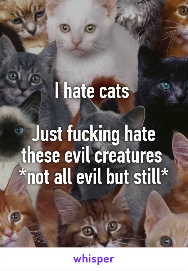 I hate cats   Just fucking hate these evil creatures  *not all evil but still*