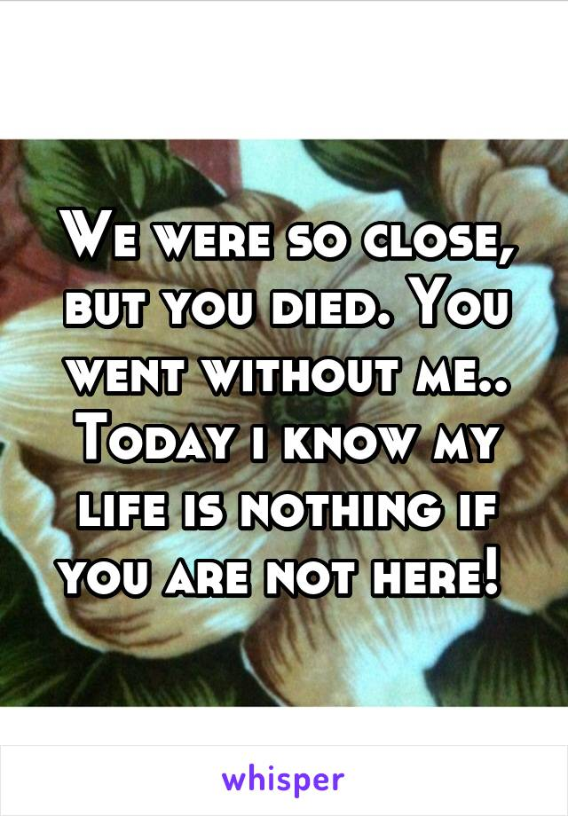 We were so close, but you died. You went without me.. Today i know my life is nothing if you are not here!