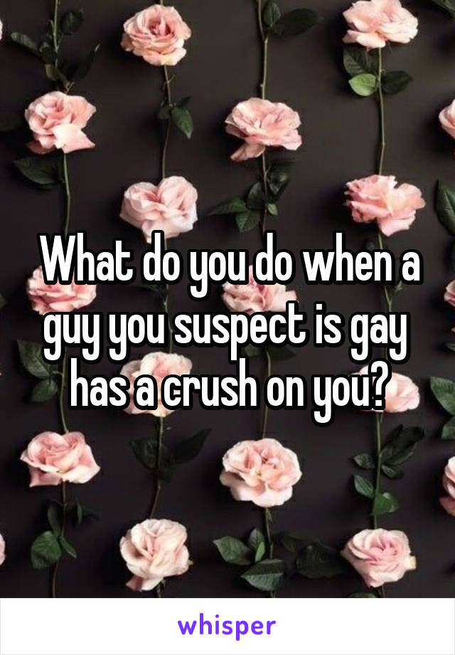 What do you do when a guy you suspect is gay  has a crush on you?