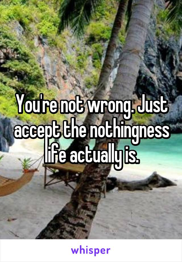 You're not wrong. Just accept the nothingness life actually is.