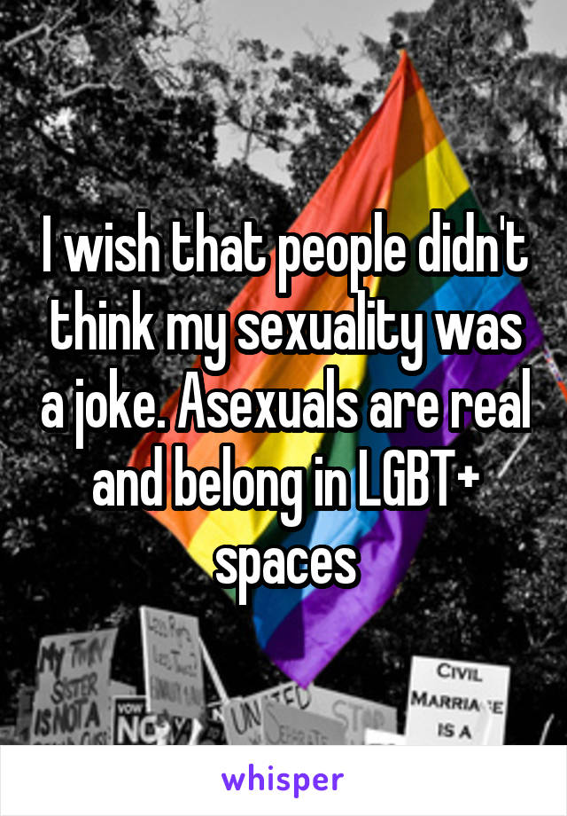 I wish that people didn't think my sexuality was a joke. Asexuals are real and belong in LGBT+ spaces