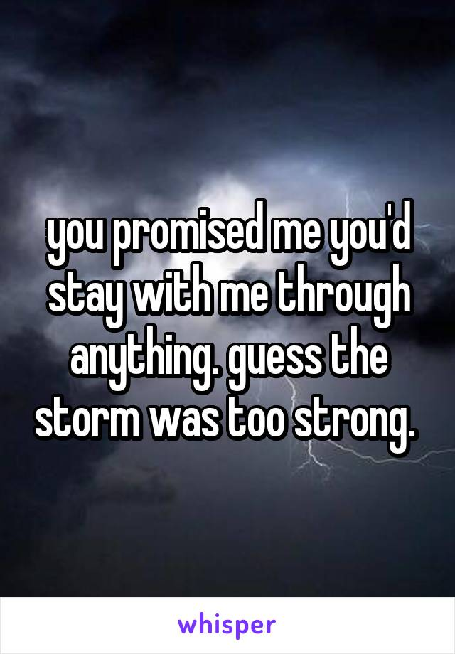 you promised me you'd stay with me through anything. guess the storm was too strong.