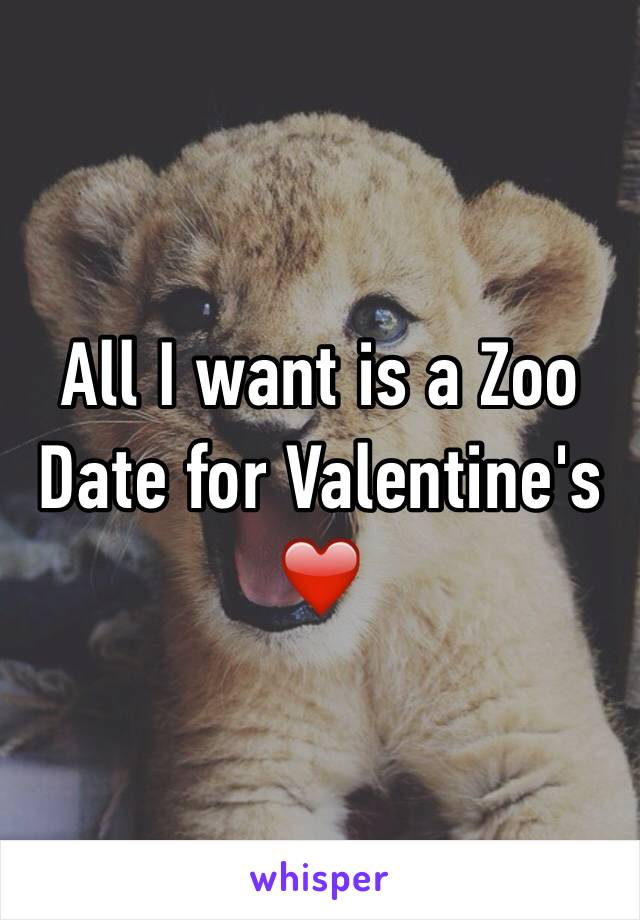 All I want is a Zoo Date for Valentine's ❤️