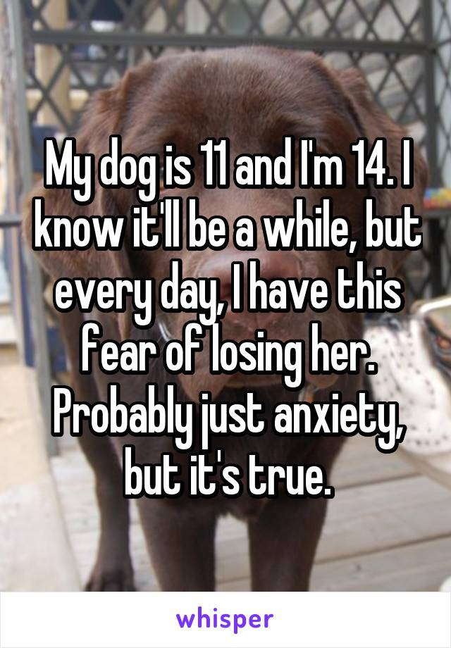 My dog is 11 and I'm 14. I know it'll be a while, but every day, I have this fear of losing her. Probably just anxiety, but it's true.