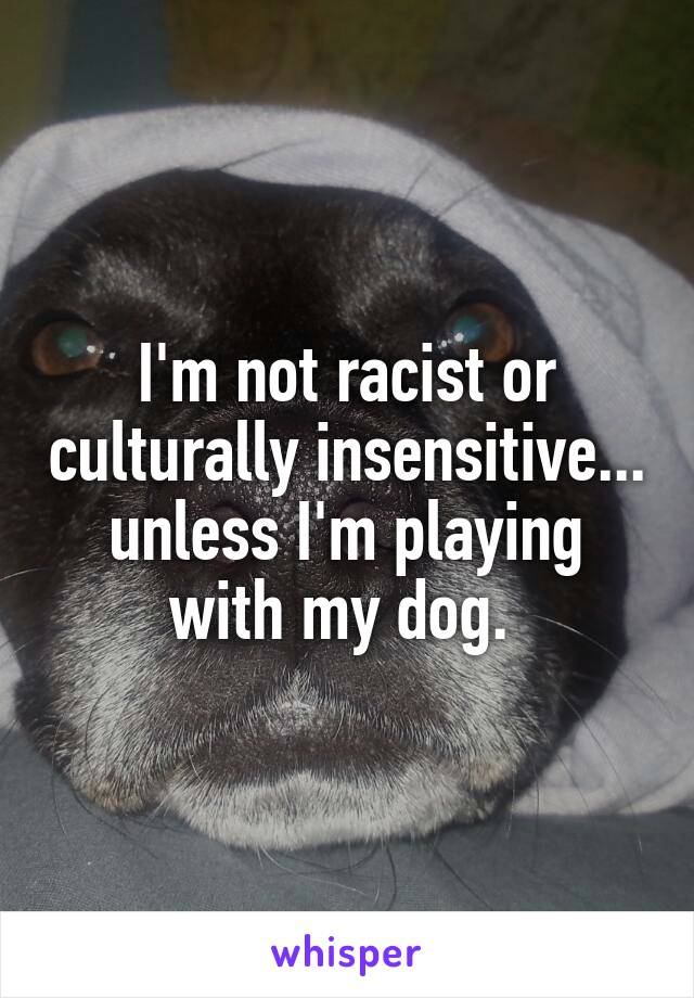 I'm not racist or culturally insensitive... unless I'm playing with my dog.