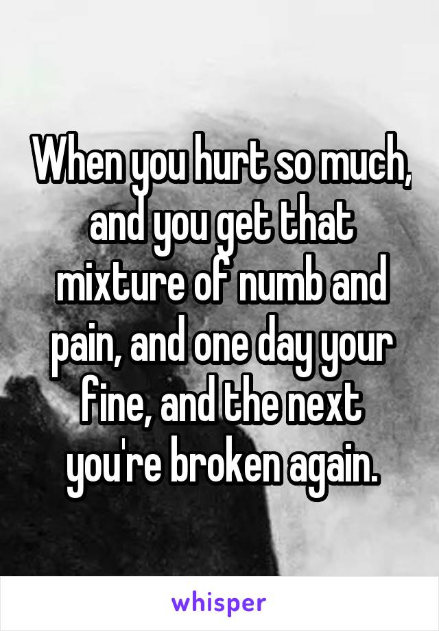 When you hurt so much, and you get that mixture of numb and pain, and one day your fine, and the next you're broken again.