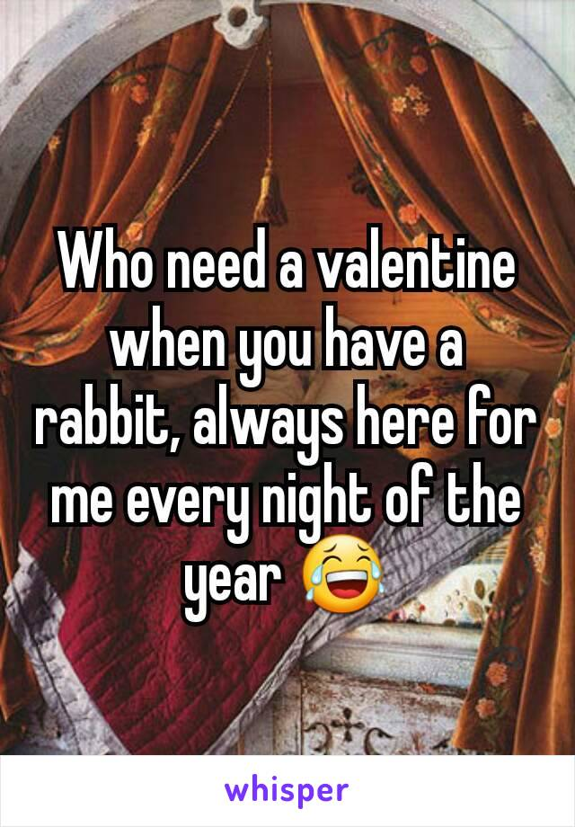 Who need a valentine when you have a rabbit, always here for me every night of the year 😂