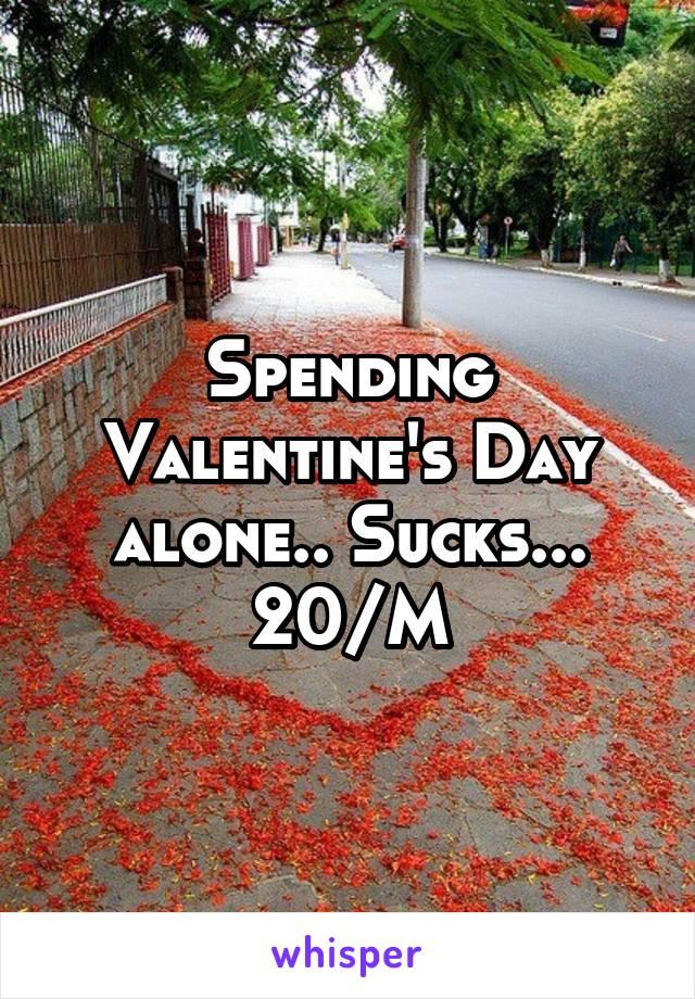 Spending Valentine's Day alone.. Sucks... 20/M