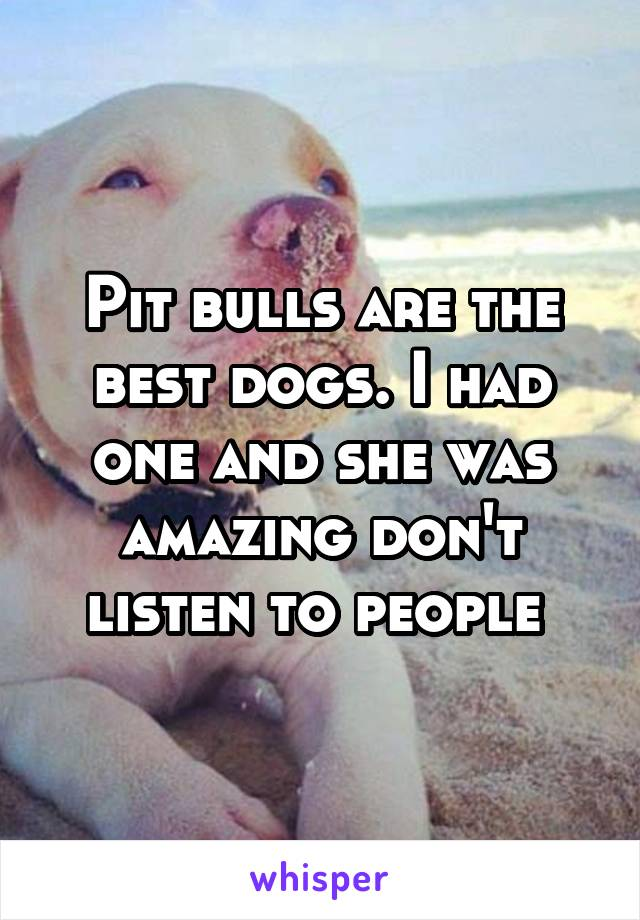 Pit bulls are the best dogs. I had one and she was amazing don't listen to people