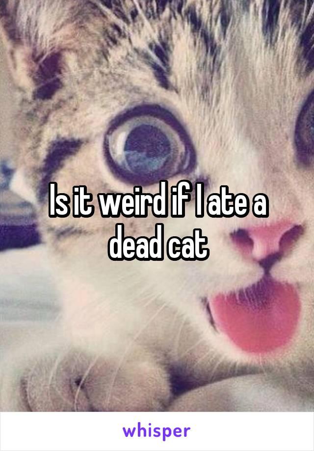 Is it weird if I ate a dead cat