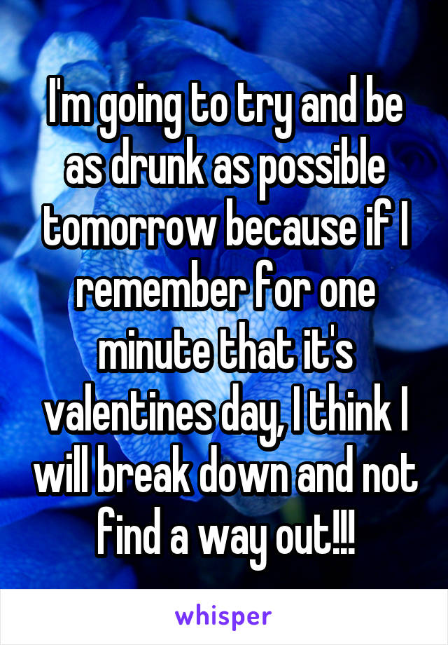 I'm going to try and be as drunk as possible tomorrow because if I remember for one minute that it's valentines day, I think I will break down and not find a way out!!!