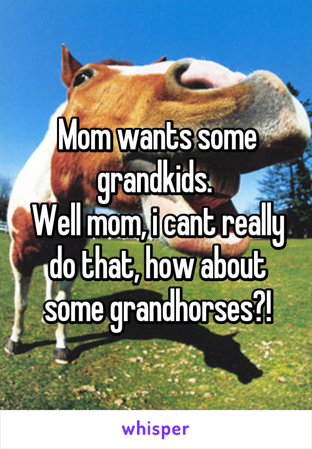 Mom wants some grandkids.  Well mom, i cant really do that, how about some grandhorses?!