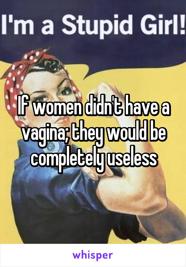 If women didn't have a vagina; they would be completely useless