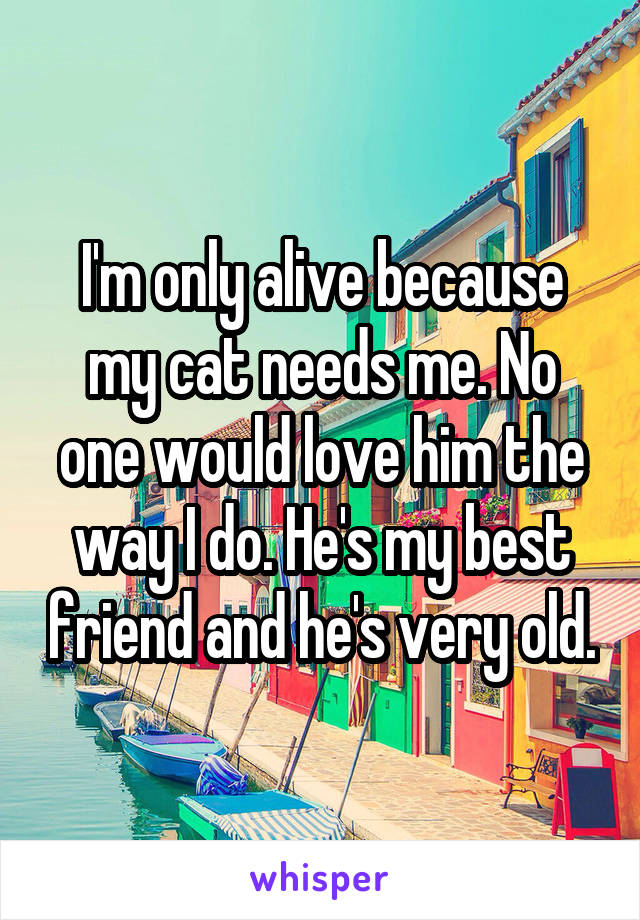 I'm only alive because my cat needs me. No one would love him the way I do. He's my best friend and he's very old.