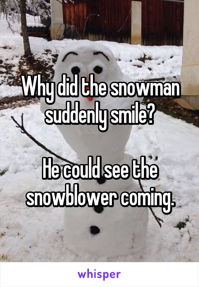 Why did the snowman suddenly smile?  He could see the snowblower coming.