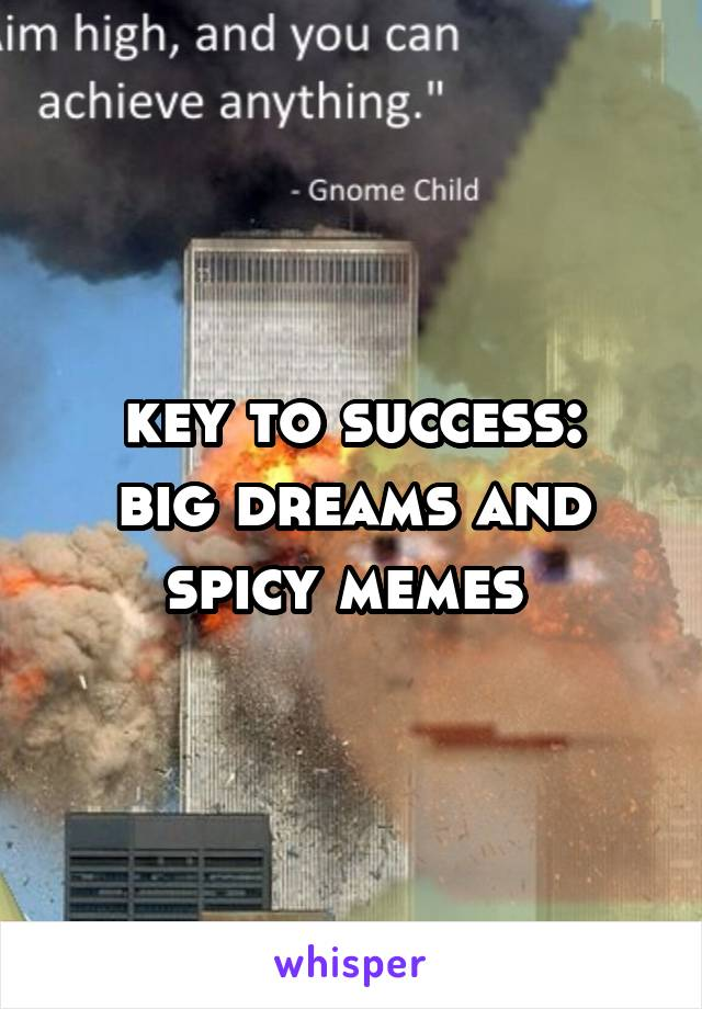 key to success: big dreams and spicy memes
