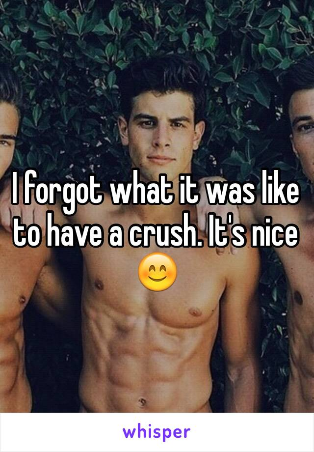 I forgot what it was like to have a crush. It's nice  😊