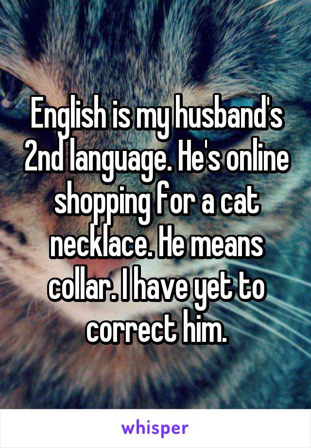 English is my husband's 2nd language. He's online shopping for a cat necklace. He means collar. I have yet to correct him.