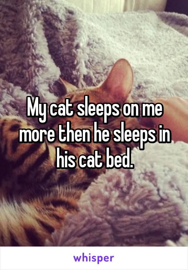 My cat sleeps on me more then he sleeps in his cat bed.