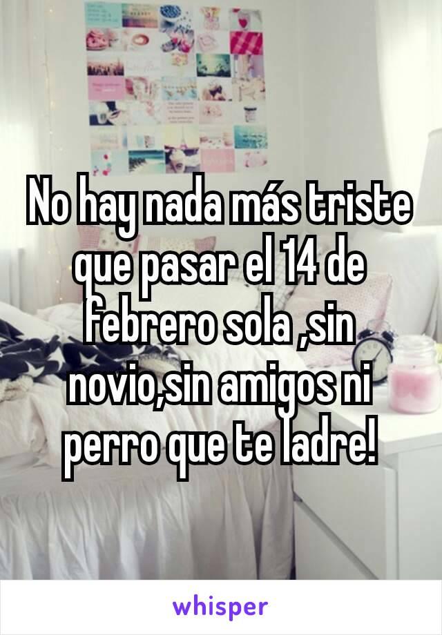 No hay nada más triste que pasar el 14 de febrero sola ,sin novio,sin amigos ni perro que te ladre!