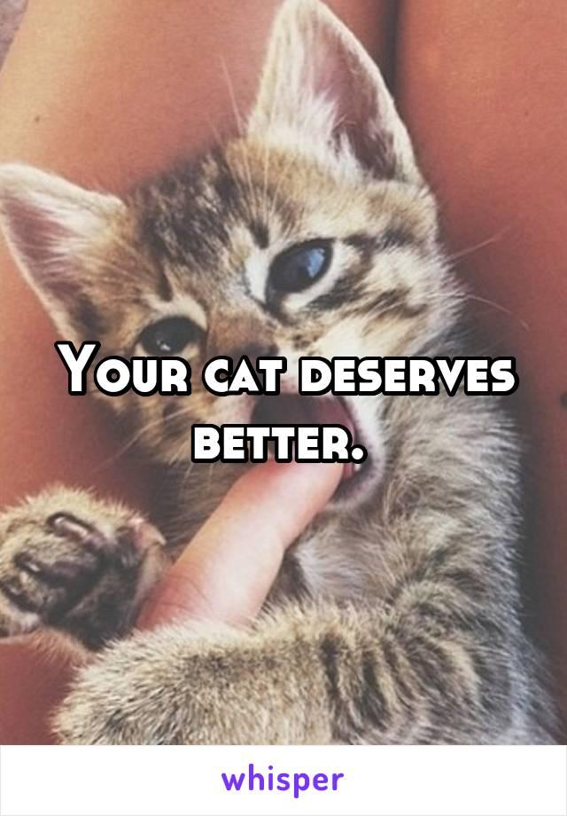 Your cat deserves better.