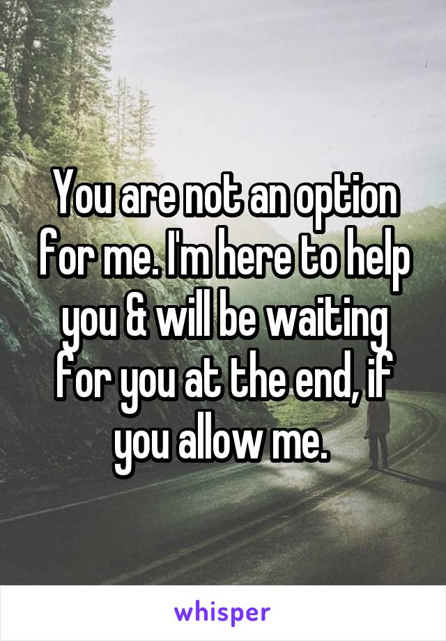 You are not an option for me. I'm here to help you & will be waiting for you at the end, if you allow me.