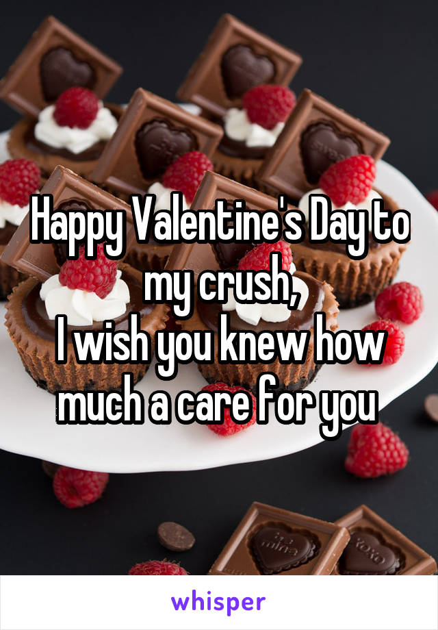Happy Valentine's Day to my crush, I wish you knew how much a care for you