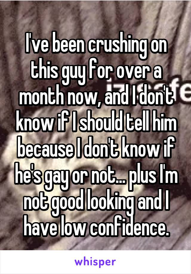 I've been crushing on this guy for over a month now, and I don't know if I should tell him because I don't know if he's gay or not... plus I'm not good looking and I have low confidence.