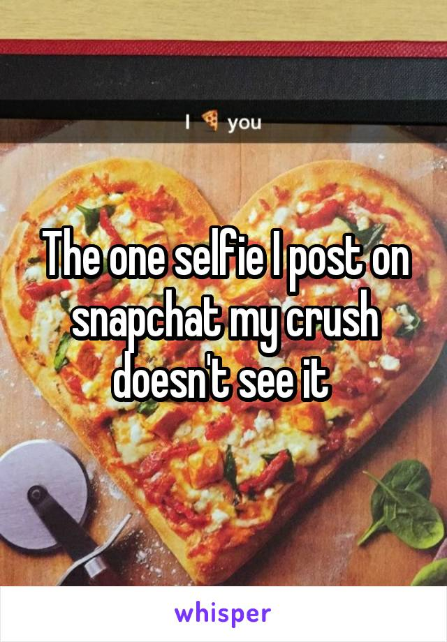 The one selfie I post on snapchat my crush doesn't see it
