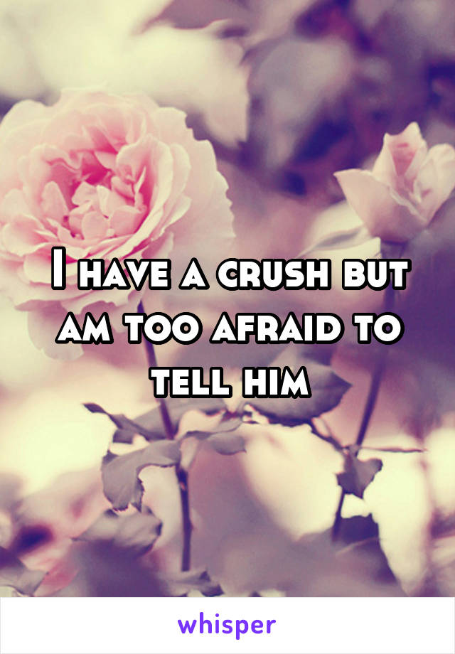 I have a crush but am too afraid to tell him