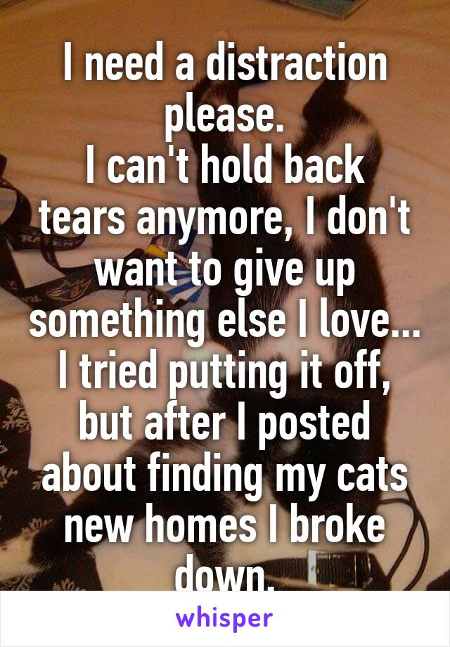 I need a distraction please. I can't hold back tears anymore, I don't want to give up something else I love... I tried putting it off, but after I posted about finding my cats new homes I broke down.