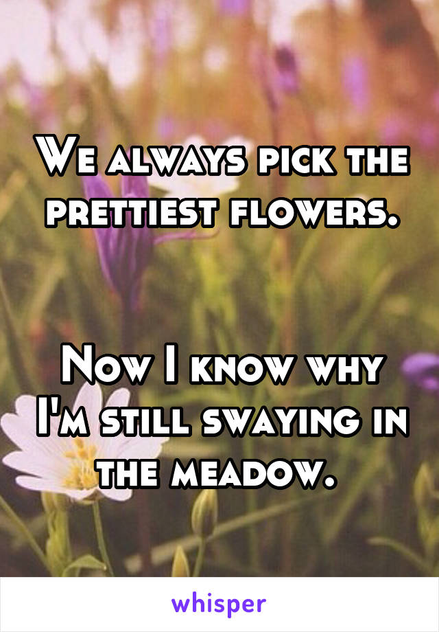 We always pick the prettiest flowers.   Now I know why I'm still swaying in the meadow.