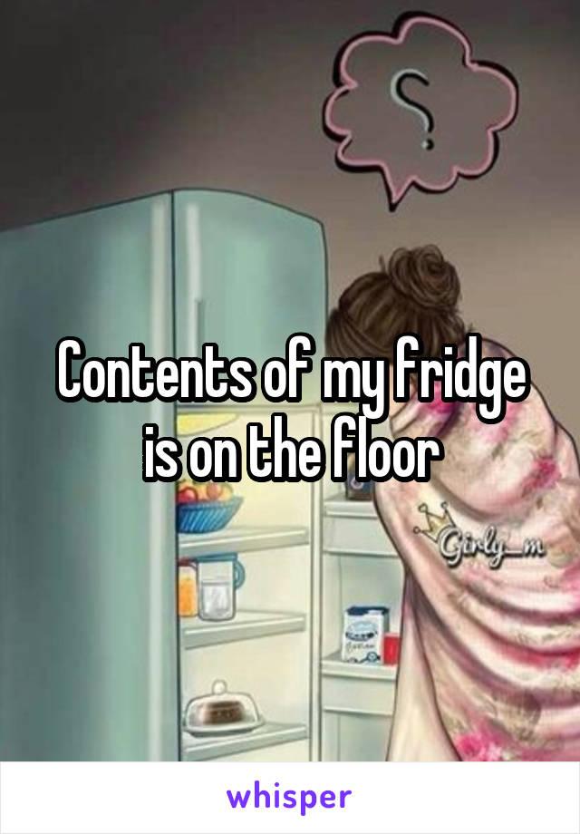 Contents of my fridge is on the floor