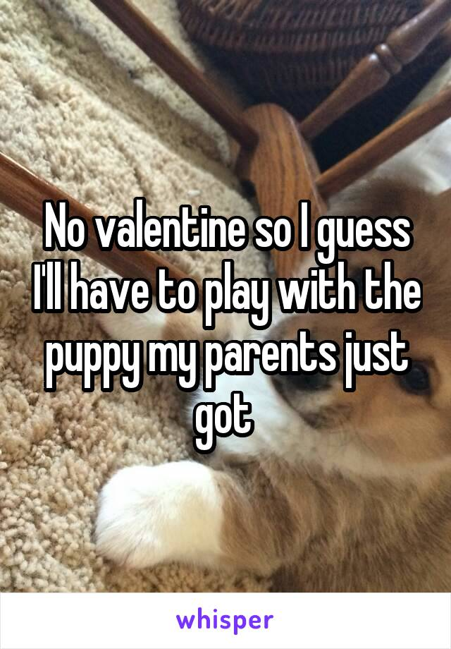No valentine so I guess I'll have to play with the puppy my parents just got