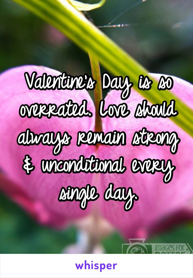 Valentine's Day is so overrated. Love should always remain strong & unconditional every single day.