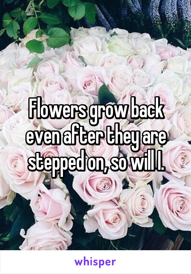 Flowers grow back even after they are stepped on, so will I.