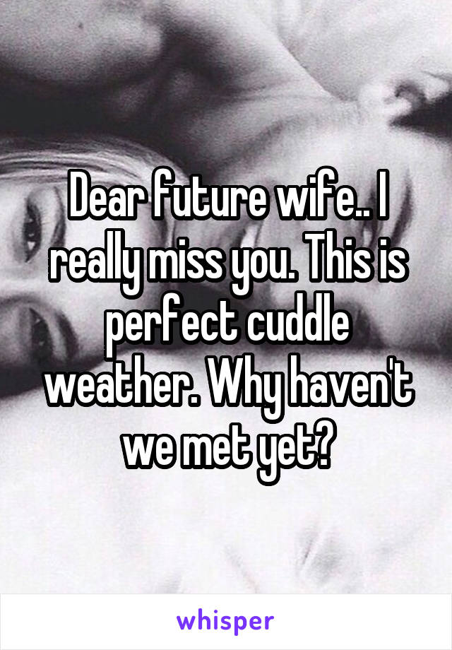 Dear future wife.. I really miss you. This is perfect cuddle weather. Why haven't we met yet?