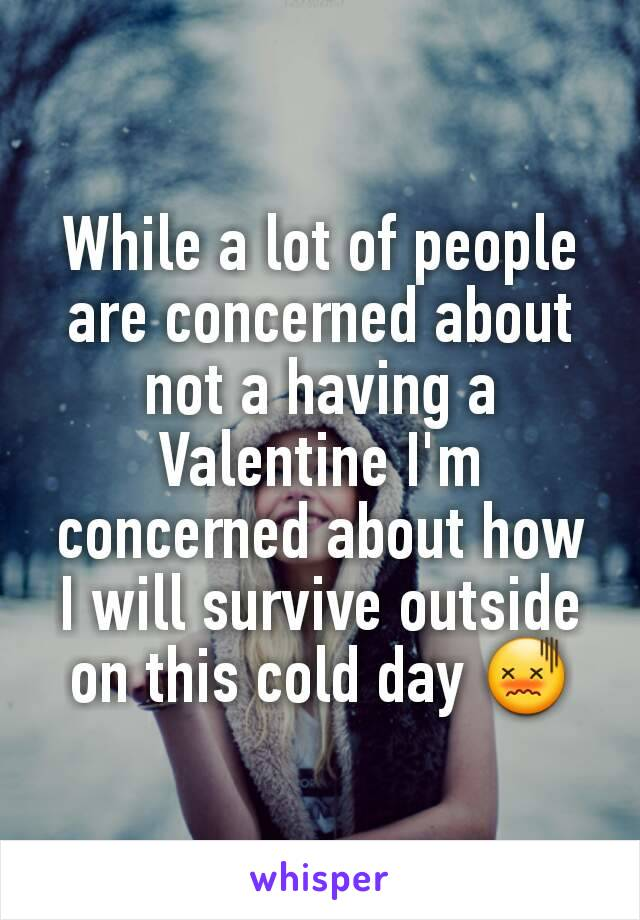 While a lot of people are concerned about not a having a Valentine I'm concerned about how I will survive outside on this cold day 😖