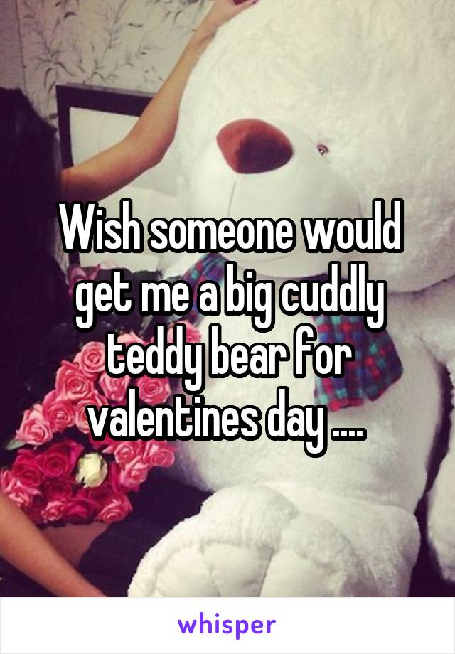 Wish someone would get me a big cuddly teddy bear for valentines day ....