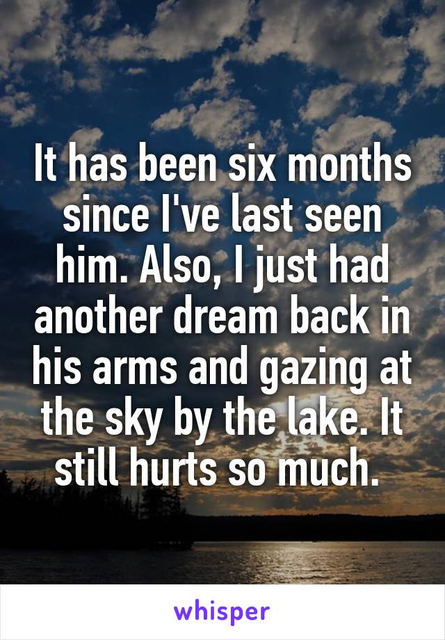 It has been six months since I've last seen him. Also, I just had another dream back in his arms and gazing at the sky by the lake. It still hurts so much.