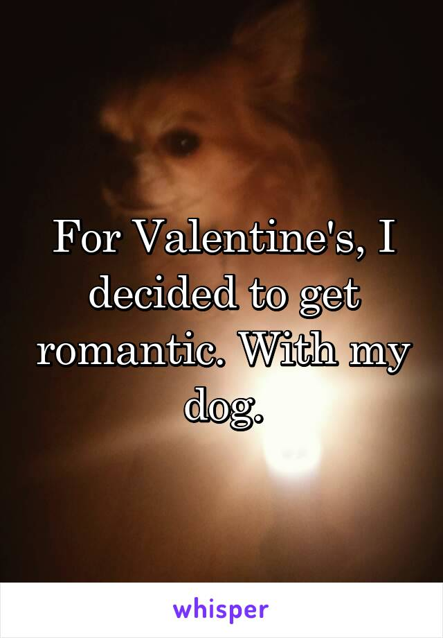 For Valentine's, I decided to get romantic. With my dog.